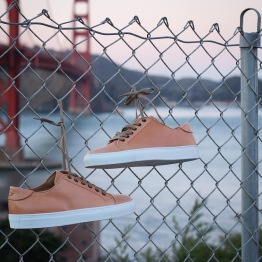 """""""Limited"""" Pillar Low's"""